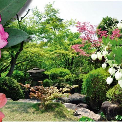 堀江オルゴール博物館 春の庭園開放