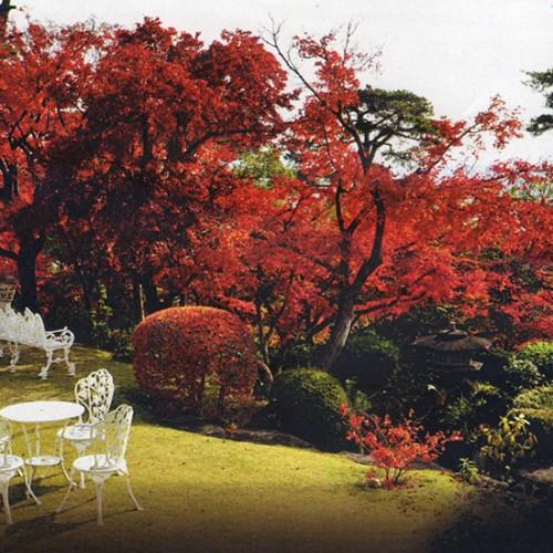 一度は訪れてほしい! このまちの文化財産 堀江オルゴール博物館 秋の庭園開放